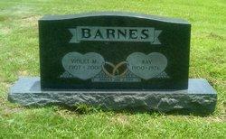 Ray Barnes