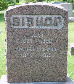 Levi Bishop