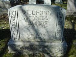 John Henry Wildfong