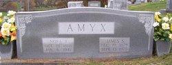 James S Amyx