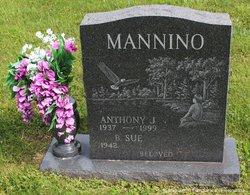 "Anthony J. ""Tony"" Mannino"