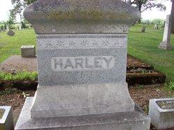 Levi Stuckey Harley