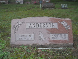 Annette M Anderson