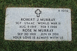 Robert J Murray