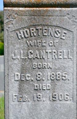 Hortense Cantrell