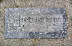 Sandi Sappingfield