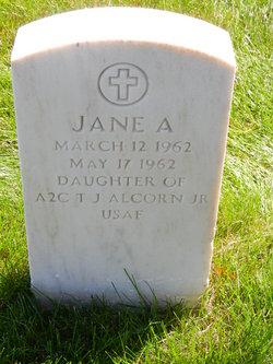 Jane A Alcorn