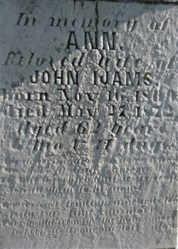 Ann <I>Wooden</I> Ijams
