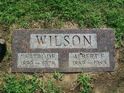 Albert E. Wilson