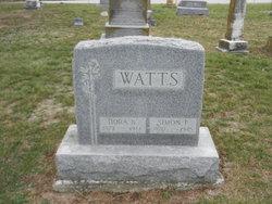 Simon P Watts
