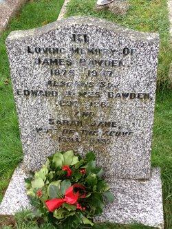 Edward James Bawden