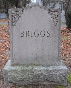 Elbridge C Briggs