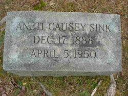 Aneti <I>Causey</I> Sink