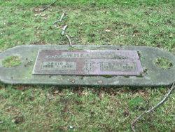 Mary R. <I>Davidson</I> Wheatley