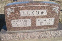 William John Lexow