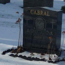 Maria J Cabral