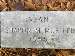 Sharon M Mueller