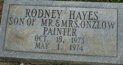 Rodney Hayes Painter