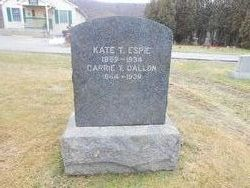 Carrie T. <I>Teerpenning</I> Dallon