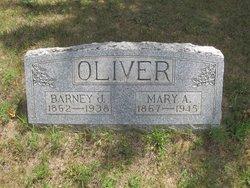 Mary Anna <I>Vanderlip</I> Oliver