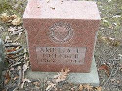 Amelia E. Noecker