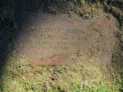 Anthony J Cambria