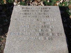Thomas A Garvey