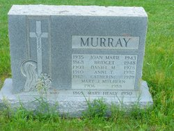 Anne T Murray