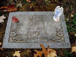 Joyce A Moe