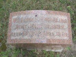 William L. Swadling