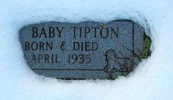 Baby Tipton