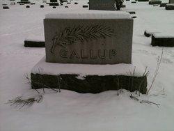Frances Belle <I>Shafer</I> Gallup