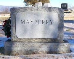 Richard E Mayberry