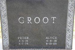Alyce <I>Prince</I> Groot