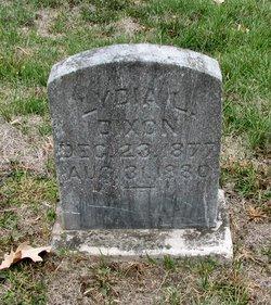 Lydia L Dixon