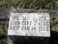 William Albea