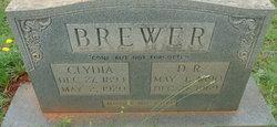 Dorsey Rufus Brewer