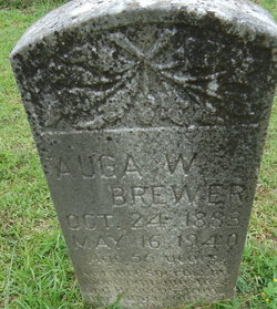 Auga Washington Brewer