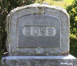 William Colby Goss