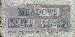 Sarah Elizabeth <I>Combs</I> Meadows