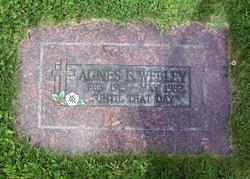 Agnes Edna <I>Perkins</I> Webley