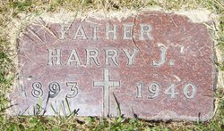 Harry J Berry