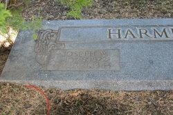 Joseph William Harmer