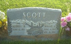 Wayne A Scott