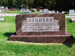 Charlotte Elizabeth <I>Sprinkle</I> Johnson