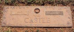 Henry Grady Castle