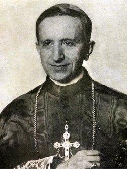 Cardinal Fernando Cento