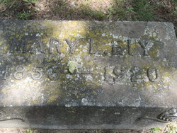 Mary L <I>Irwin</I> Ely