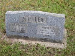 Harold Clarke Mueller