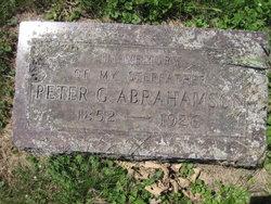 Peter G Abrahamson